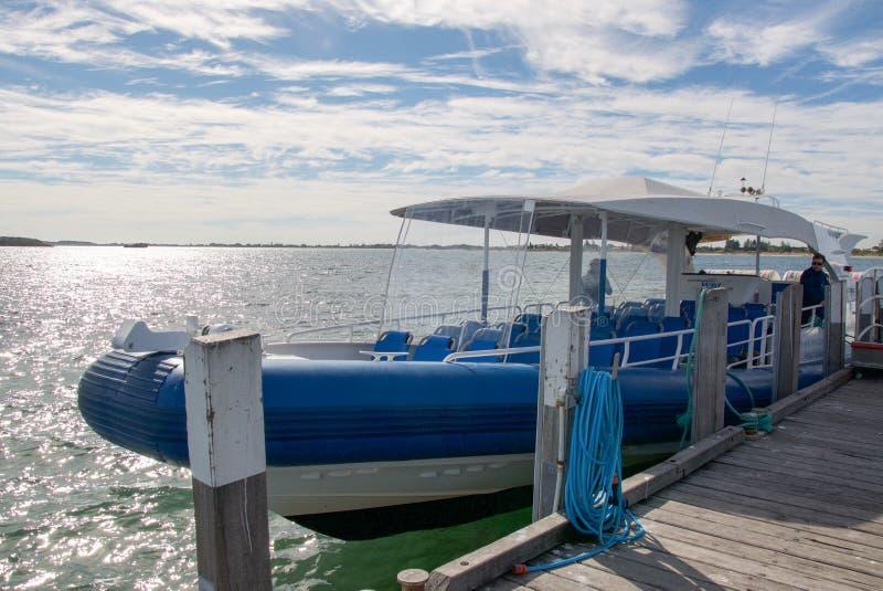 Barca selvaggia di crociera di incontri di Rockingham fotografia stock