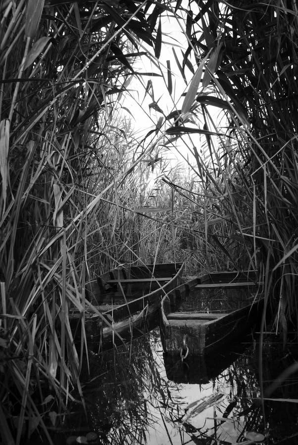 Barca sul lago fotografia stock