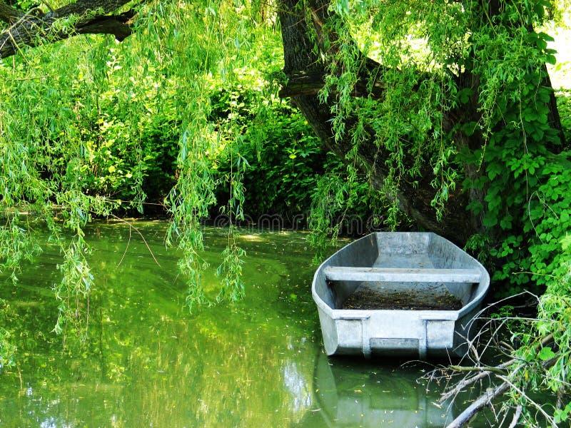 Download Barca sul lago immagine stock. Immagine di attività, scenico - 7311797