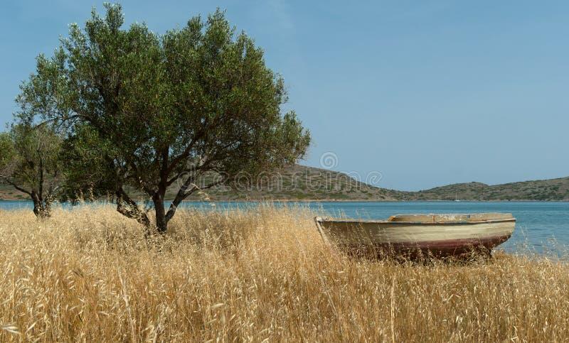 Barca sul puntello mediterraneo vicino di olivo fotografia stock