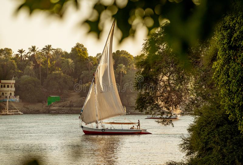 Barca tradizionale di Felluca sul fiume Nilo a Luxor Egitto al tramonto fotografia stock