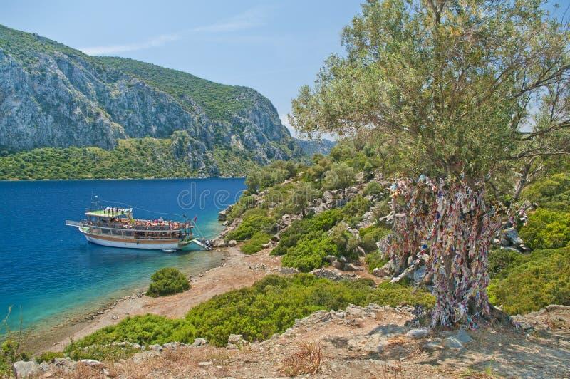 Barca turistica ad un'isola con vecchio di olivo coperto di colou fotografia stock libera da diritti