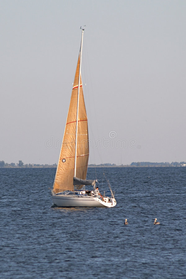 Barca a vela 2 immagini stock libere da diritti