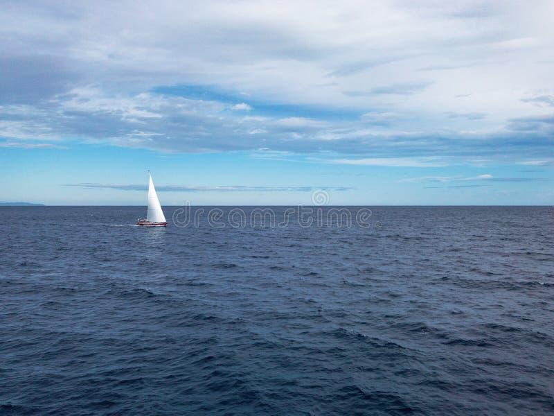 Barca a vela al mare fotografia stock libera da diritti