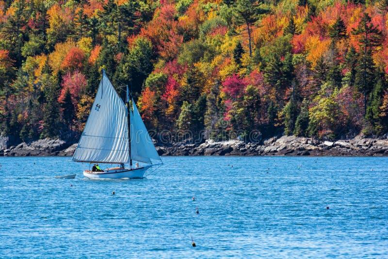Barca a vela in autunno in Maine costiero, Nuova Inghilterra immagine stock libera da diritti