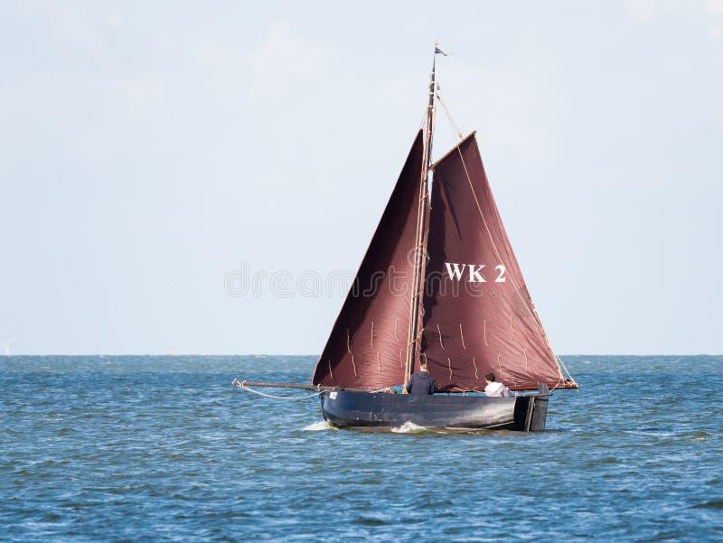 Barca a vela con le vele marroni che navigano sul lago IJsselmeer vicino a Enkhui immagini stock libere da diritti