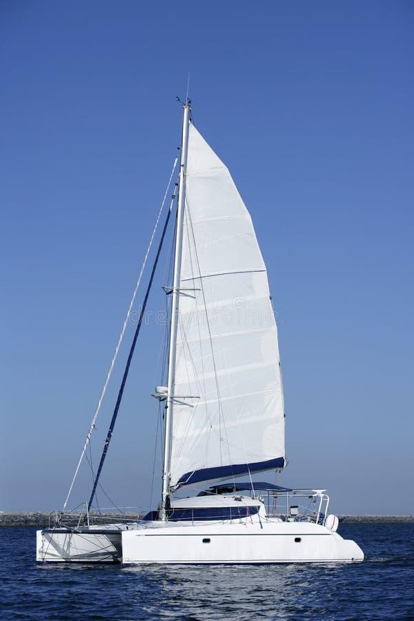 Barca a vela del catamarano che naviga l'acqua blu dell'oceano fotografie stock libere da diritti