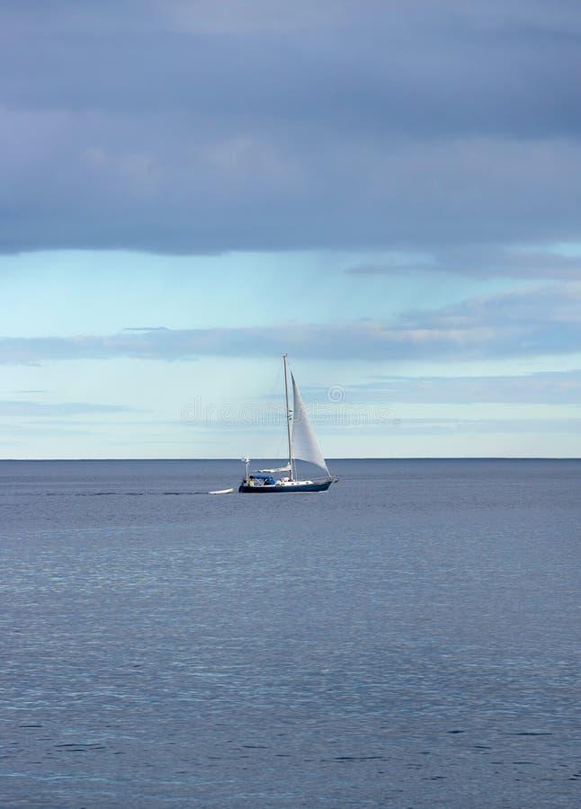 Download Barca a vela nell'oceano immagine stock. Immagine di cielo - 7305957
