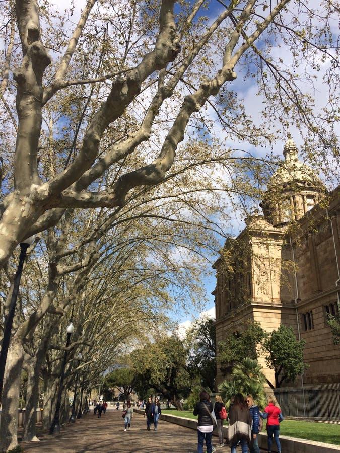 Barcelona-Quadrat lizenzfreies stockfoto