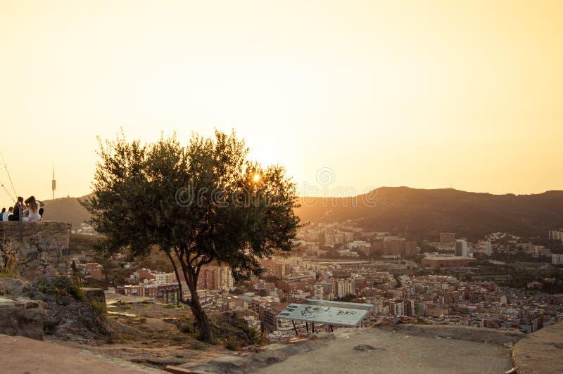 Barcelona skyline panorama from Turo Rovira, Catalonia, Spain stock images