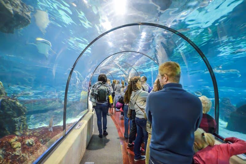 BARCELONA, SPAIN - APRIL 28: Aquarium tunnel in Barcelona on April 28, 2016 in Barcelona, Spain stock photography