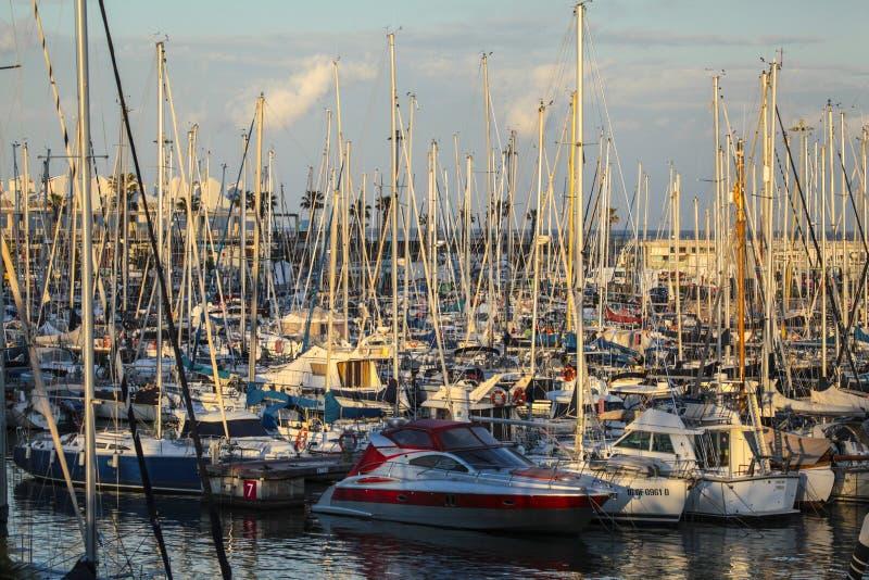 Yachts docked at Marina of Port Olmpic, Barcelona, Spain royalty free stock photo
