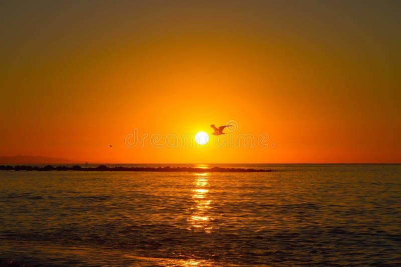 Barcelona sunrise stock photography