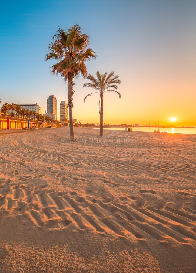 Barcelonetastrand in Barcelona bij zonsopgang royalty-vrije stock foto's