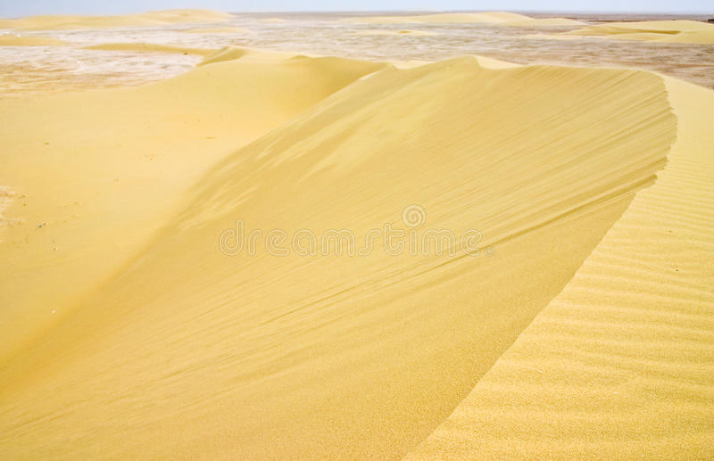 Barchan dune complex in Qatar stock images