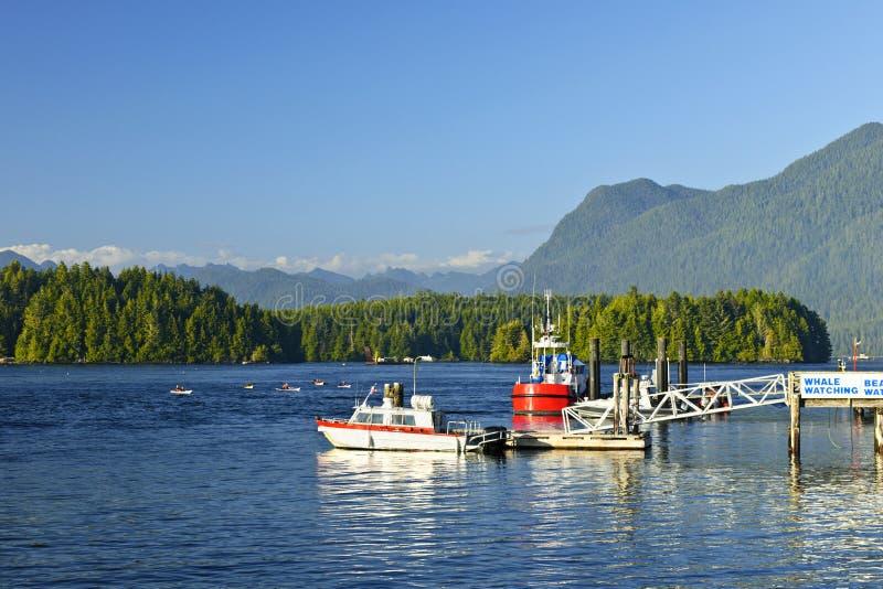 Barche al bacino in Tofino, isola di Vancouver, Canada fotografie stock