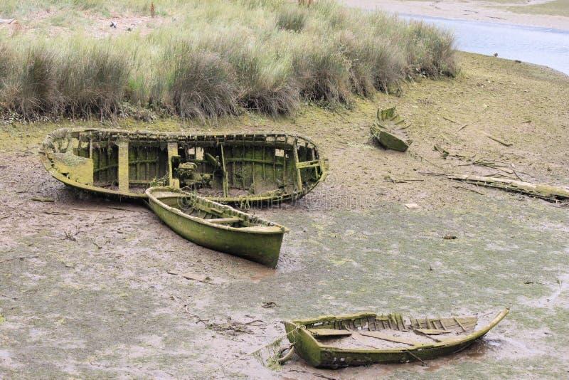 Barche con erba immagini stock