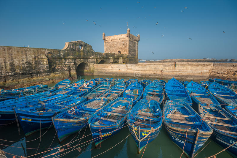 Barche del pescatore nel porto di Essaouira, Marocco fotografia stock libera da diritti