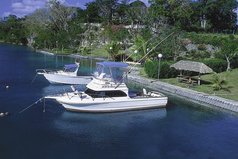 Barche di pesca sportiva immagine stock libera da diritti