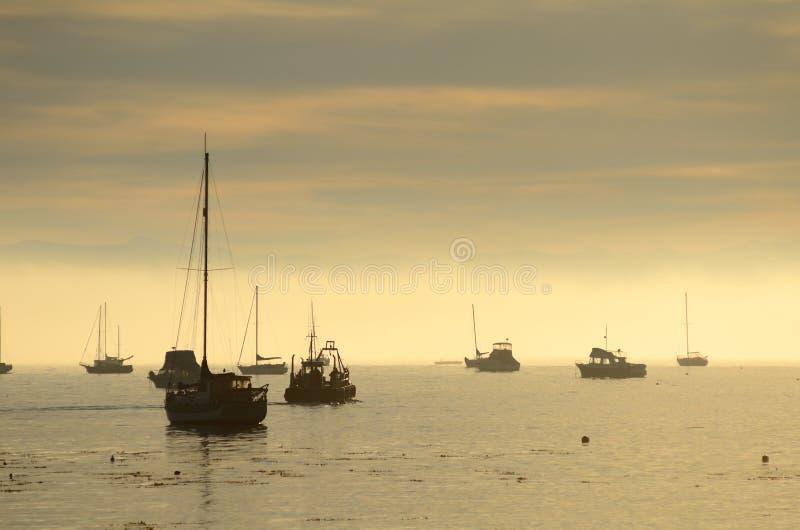 Barche di Pismo fotografia stock
