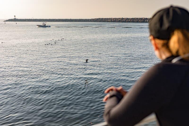 Barche ed uccelli di sorveglianza della donna fotografia stock libera da diritti