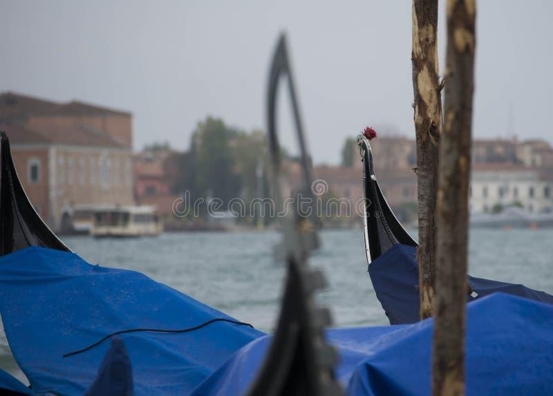 Barche Gondole Venezia fotografía de archivo