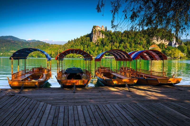 Barche in legno di Pletna ancorate al lago Bled, Slovenia immagini stock libere da diritti