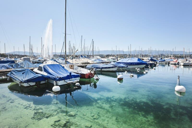 Barche lussuose e yacht ancorati nel lago Lemano, Svizzera fotografia stock libera da diritti