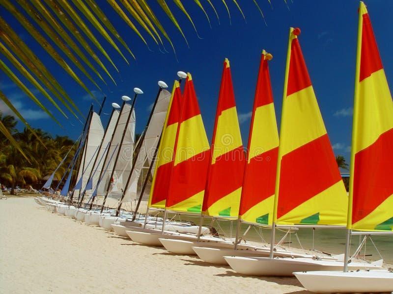 Barche nella riga, Isola Maurizio fotografia stock