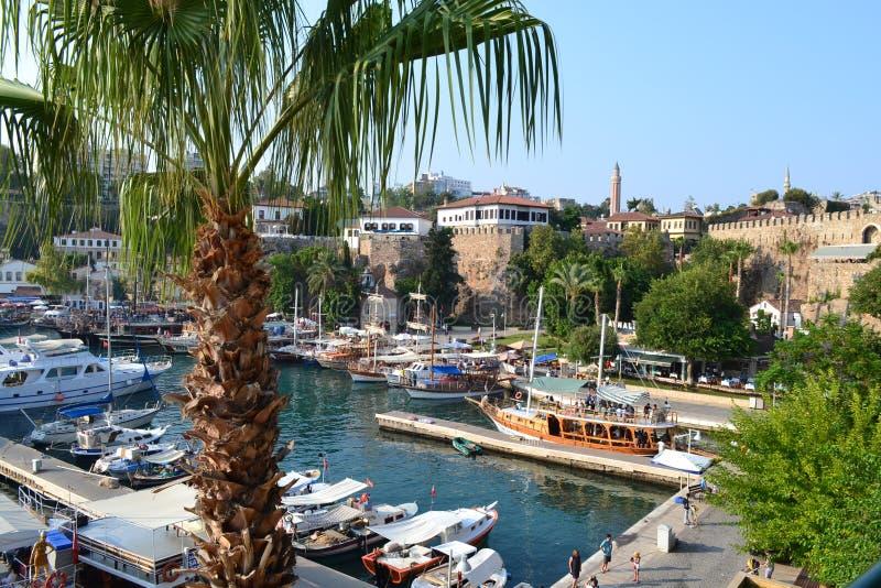 Barche, una palma e una fortezza in mar Mediterraneo nel porto Antalia fotografie stock libere da diritti