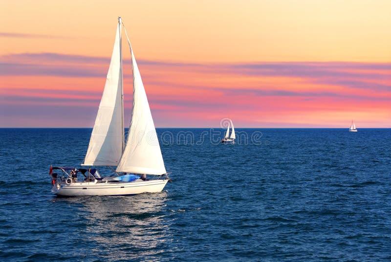 Barche a vela al tramonto fotografia stock
