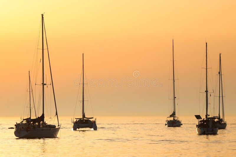 Barche a vela al tramonto in mare adriatico immagini stock libere da diritti