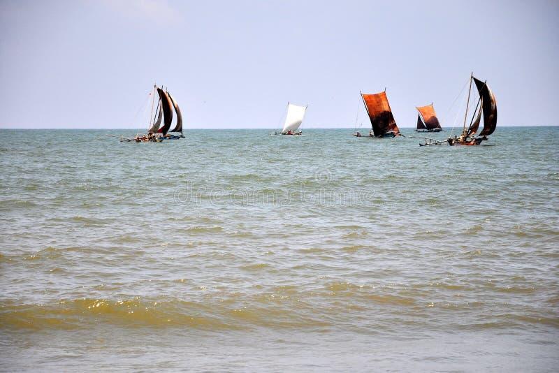 Barche a vela di pesca in Negombo, Sri Lanka fotografia stock