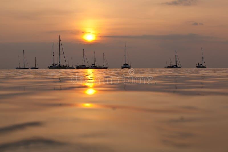 Barche a vela di tramonto immagine stock libera da diritti