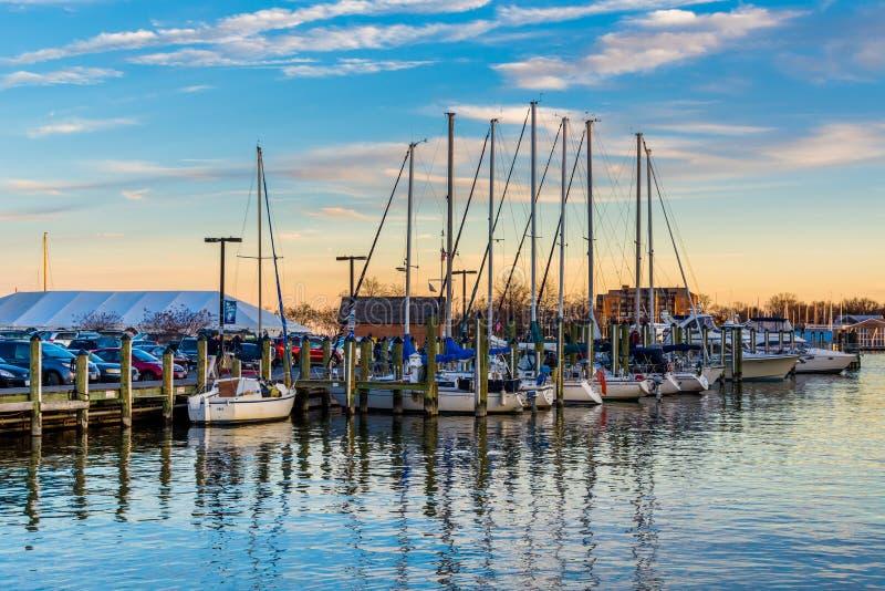 Barche a vela in un porticciolo al tramonto, a Annapolis, Maryland immagini stock libere da diritti