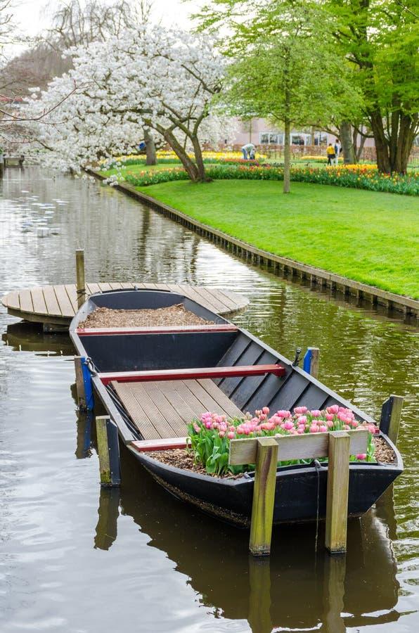 Barco com as tulipas no canal da água no parque do jardim de Keukenhof da Holanda holandesa imagens de stock