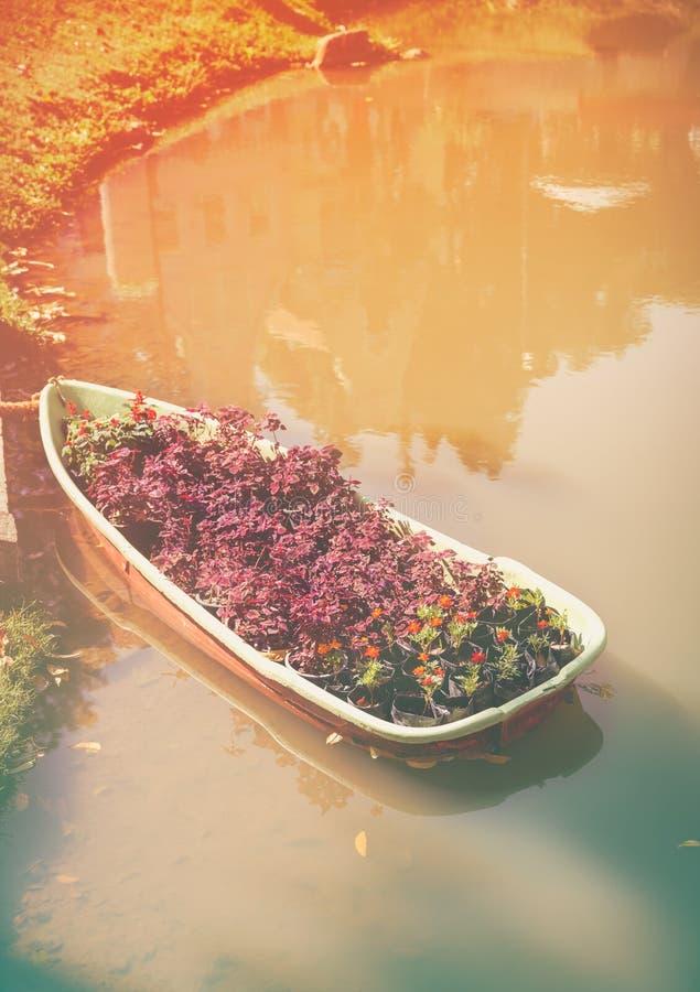 Barco con la planta del follaje y flowerer en el lago Tono y vin calientes fotos de archivo