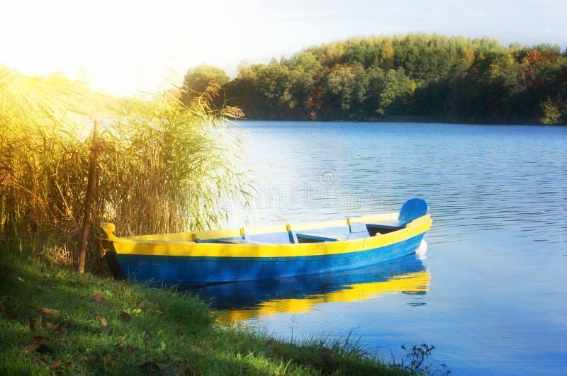 Barco de enfileiramento no lago ensolarado fotos de stock royalty free