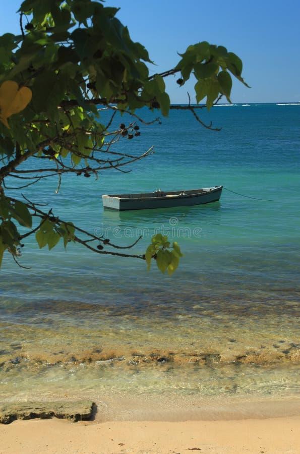Barco de fila en un mar tranquilo fotos de archivo libres de regalías