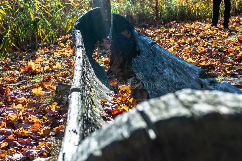 Barco de madeira velho polvilhado com as folhas de outono alaranjadas imagens de stock royalty free