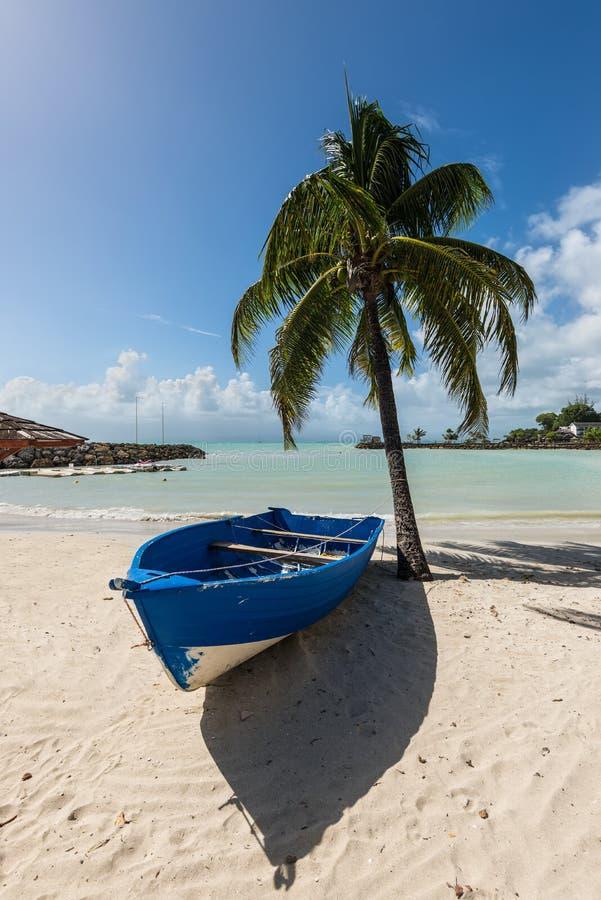 Barco de madera en la playa debajo de una palmera - el Gosier en Guade fotografía de archivo libre de regalías
