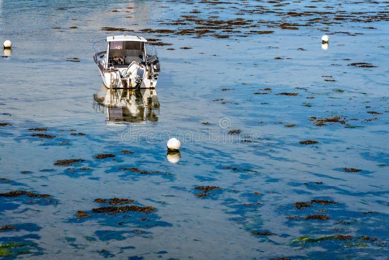 Barco de motor externo blanco que ancla en el océano fotografía de archivo