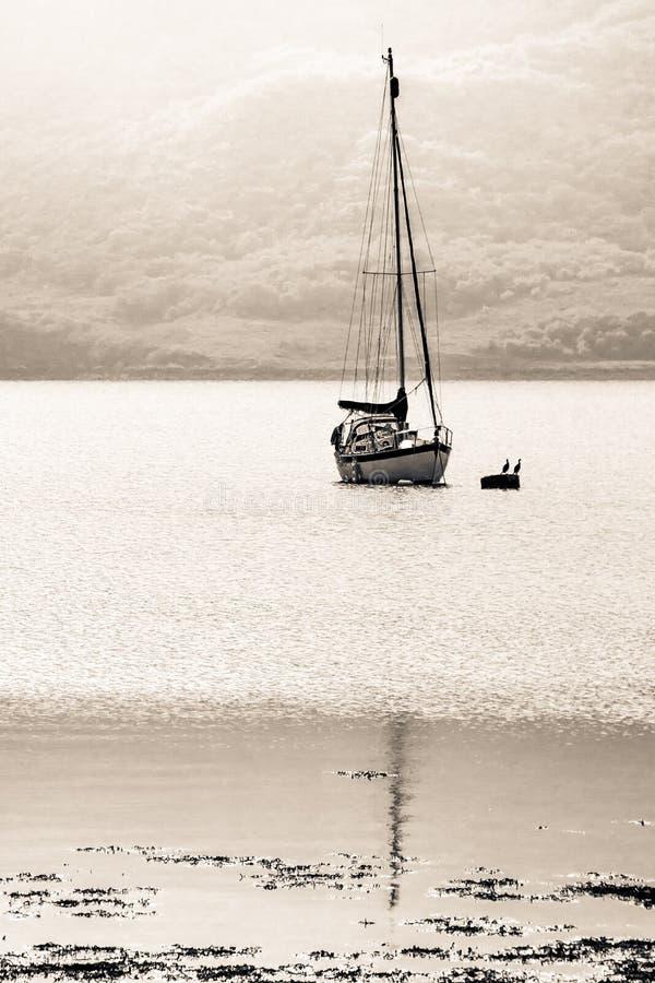 Barco de navigação no oceano no sol de ajuste fotografia de stock royalty free