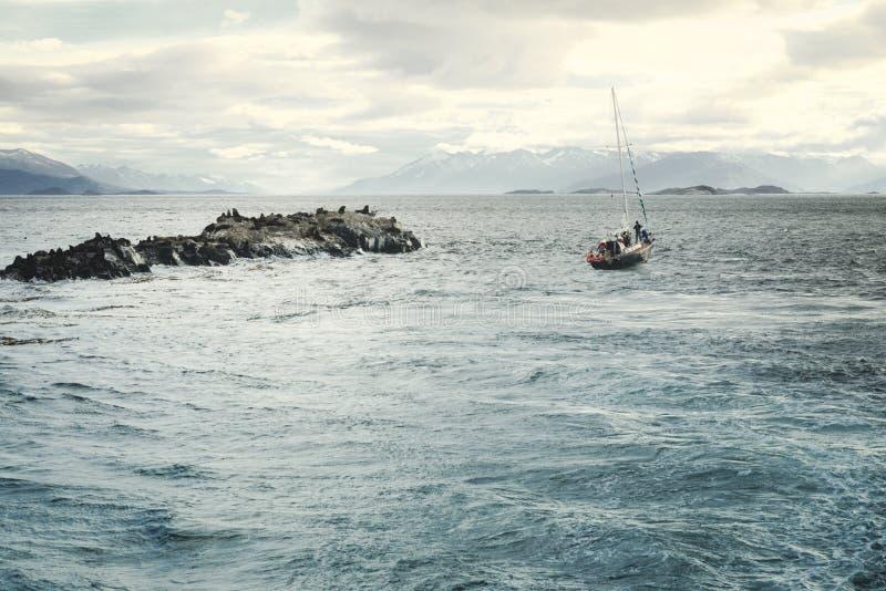Barco de navigação que passa pela colônia do leão de mar, Ushuaia fotografia de stock royalty free