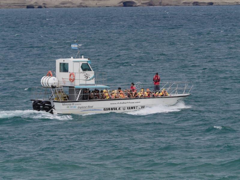 Barco de observación de la ballena fotografía de archivo