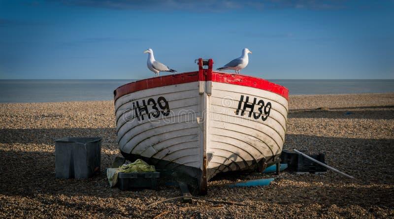Barco de pesca com gaivota imagem de stock