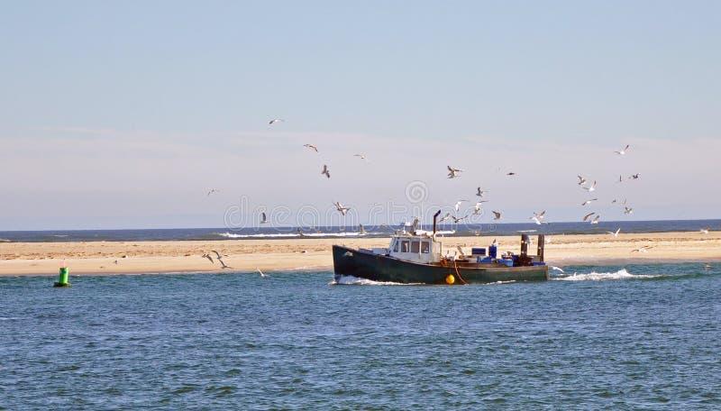 Barco de pesca con las gaviotas fotos de archivo