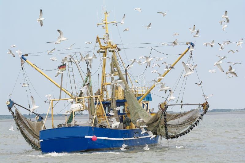 Barco de pesca con Mar del Norte de las gaviotas imagen de archivo