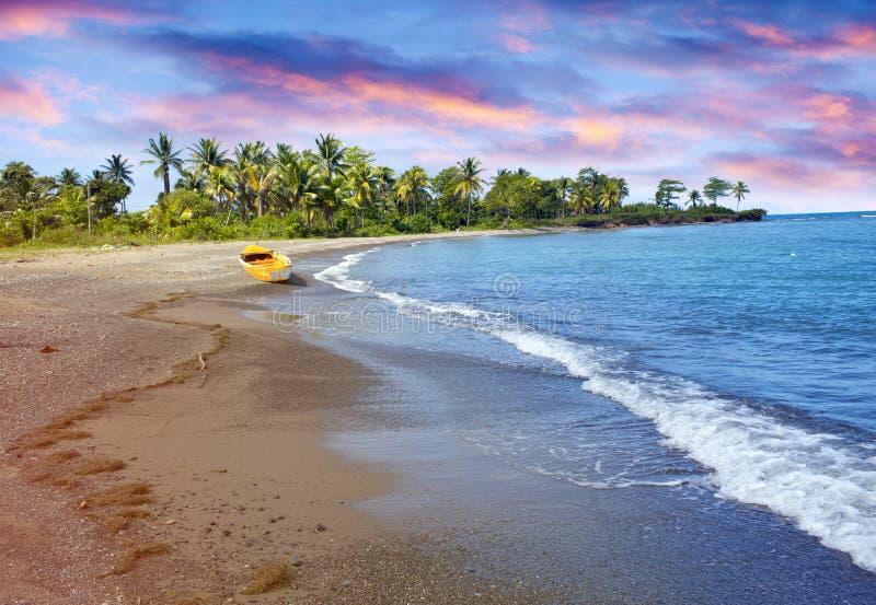 Barco de pesca de madera tradicional en costa de mar arenosa con la palmera jamaica imagen de archivo
