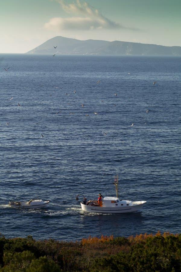 Barco de pesca no mar de adriático fotografia de stock